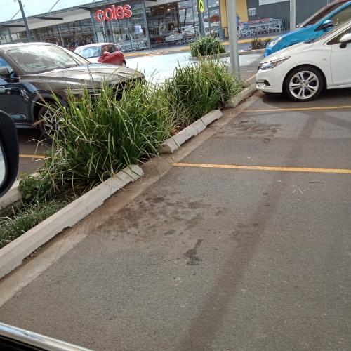Outside parking on Erin St in Wilsonton QLD 4350