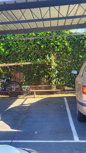Undercover parking on Edgar St in Glen Iris VIC 3146