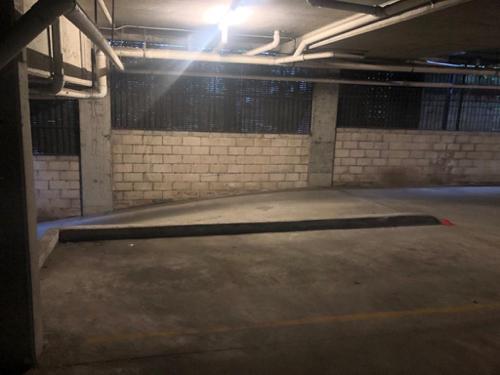Indoor lot parking on Wyndham St in Alexandria NSW 2015